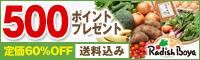 【送料込み】新鮮野菜15品お試しセット1,980円!500ポイント付き!