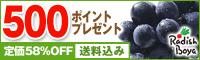 【送料込み】巨峰入り♪10品お試しセット1,980円!【500ポイント】付き!