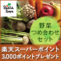 野菜セット定期宅配