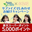 AKB48のメンバーがあなたの自宅に!?