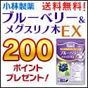 ブルーベリー&メグスリノ木EX